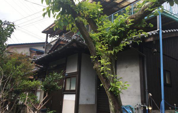 三原/糸崎 小路沿いの隠れ家的空き家 360万円